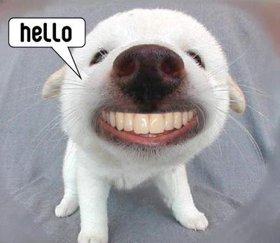 Funny Hello