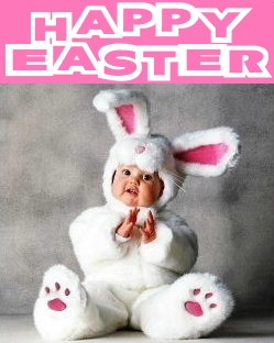 happy easter baby bunny