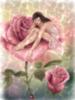 Rose fairy-water