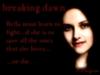 Twilight Breaking dawn