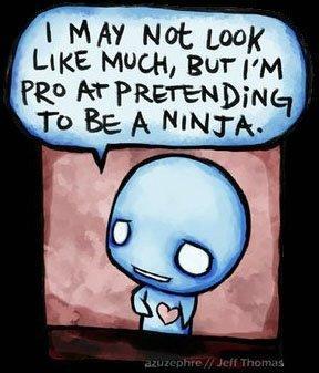 To Be A Ninja
