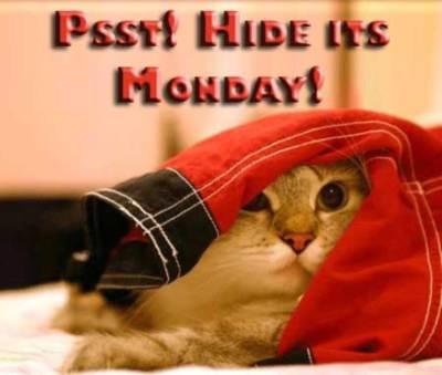 Psst! Hide its Monday!