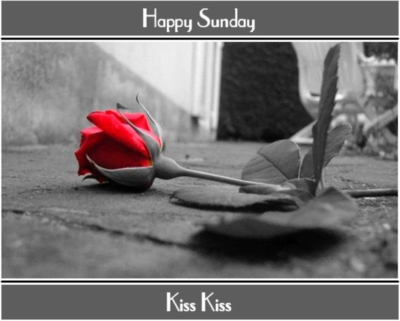 Happy Sunday Kiss Kiss