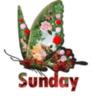 Sunday Butterfly