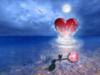 Heart in the Sea