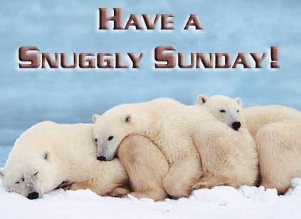 Have a Snuggly Sunday!