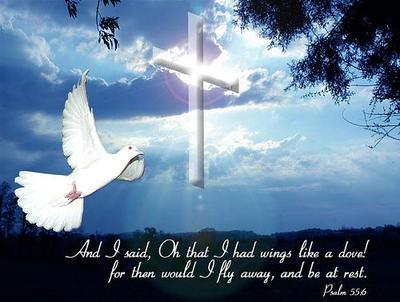 Psalm 55:6
