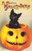 A Merry Halloween Black cat