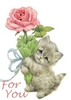 For You rose Kitty