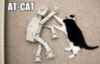 LOLCat: AT-CAT