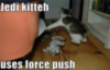 LOLCats: Jedi kitten uses force push