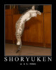 LOLCat: Shoryuken