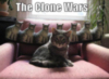 LOLCats: The Clone Wars