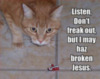 LOLCat: Listen, Don't freak out, but I may haz broken Jesus.