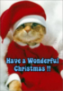 Have a Wonderful Christmas!!