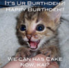 LOLCat: It's Ur Burthdeh?! Happy Burthdeh!! We can has Cake now, kai?