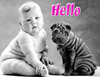 Hello Baby Dog