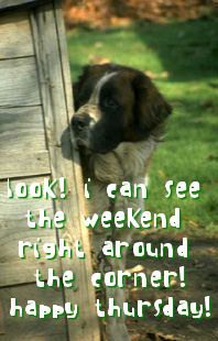 Look! I can see the weekend right around the corner! Happy Thursday!