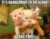 LOL cat: It's dangerous to go alone! Take this!