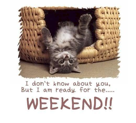 I don't know about you, But I am ready for the.....WEEKEND!