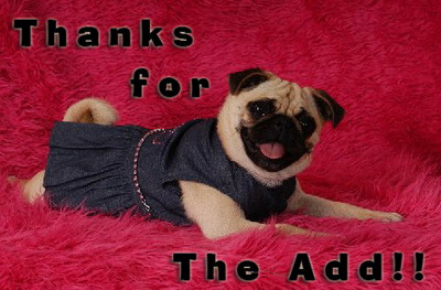 Thanks For Add !!Funny Puppy