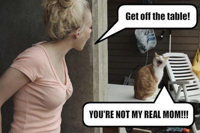 LOL Cat: you're not my real mom!