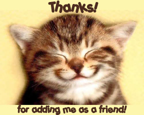 Thanks For Adding Me As A Friend Sweet Kitty