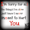 I'm sorry for all, the things I've done just know I never meant to Hurt You