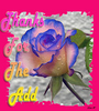 Thanks For The Add. Blue Rose