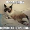 Grumpy Cat: It's Saturday Movement is Optional