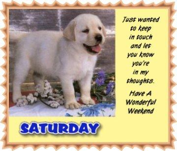 Saturday Have a Wonderful Weekend