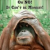 Oh NO! It Can't be Monday!