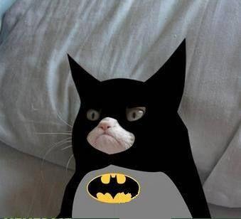 Grumpy Cat Batman