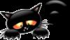 Halloween -- Black Cat