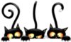 Halloween -- Black Cats