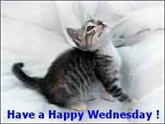 Have a Happy Wednesday!