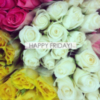 Happy Friday -- Flowers