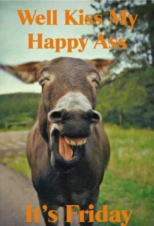 Well kiss my happy ass, it's Friday!