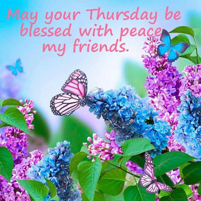 May your Thursday Be Blessed with peace my Friends.