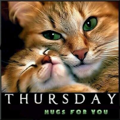 Tuesday Hugs for You