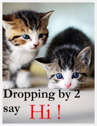 Dropping By 2 Say Hi