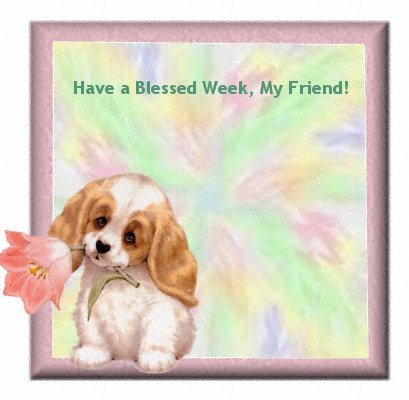 Have a Blessed Week, My Friend!