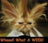 Bad Week