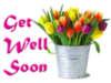Get Well Soon -- Flowers