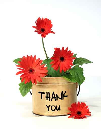 Thank You -- Flowers