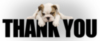 Thank You -- Puppy