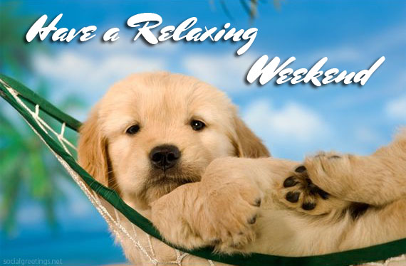 Have a relaxing Weekend -- Cute Puppy