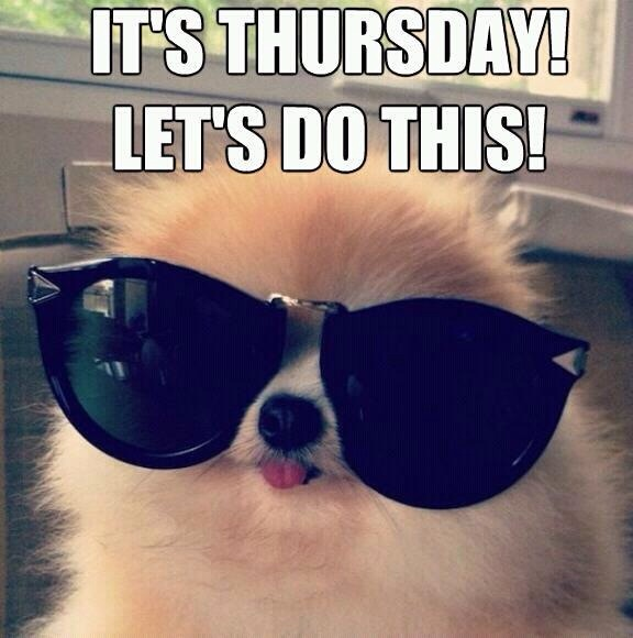 It's Thursday! Let's Do This! -- Funny Puppy