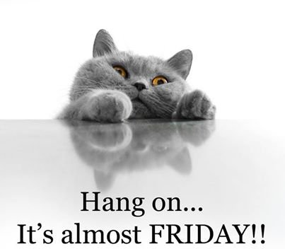 Hang on... It's almost FRIDAY!!