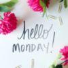 Hello Monday! -- Flowers